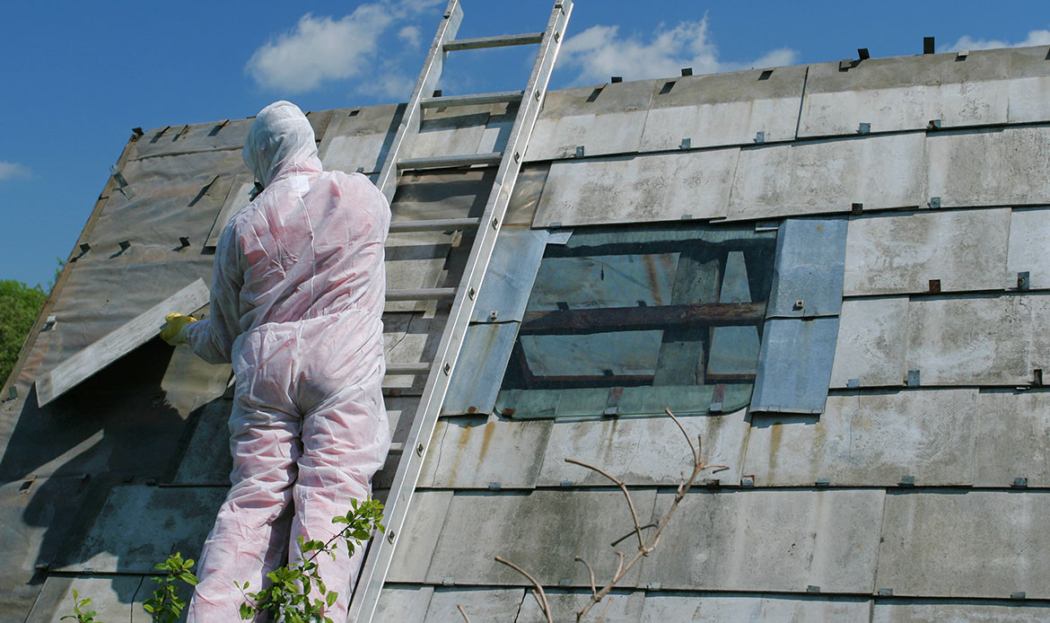 What we do, asbestos removal